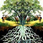 Concordance in norse/germanic and irish mythology