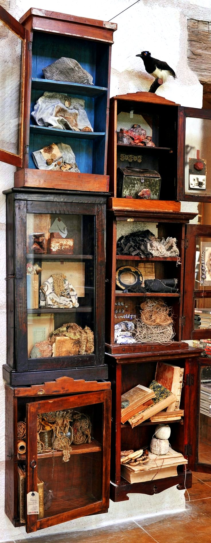 Pandora's cabinet of peculiarities & remarkable curiosity shop these hairs